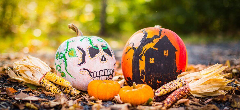 Post Mortem on Halloween - Pumpkins - RenkoLondon Blog